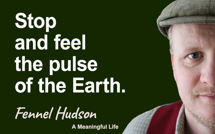 Stop and feel the pulse of the earth. Fennel Hudson author quote.
