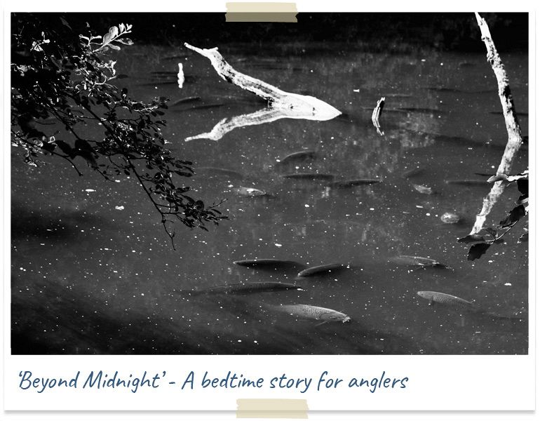 Beyond midnight - a bedtime story for anglers