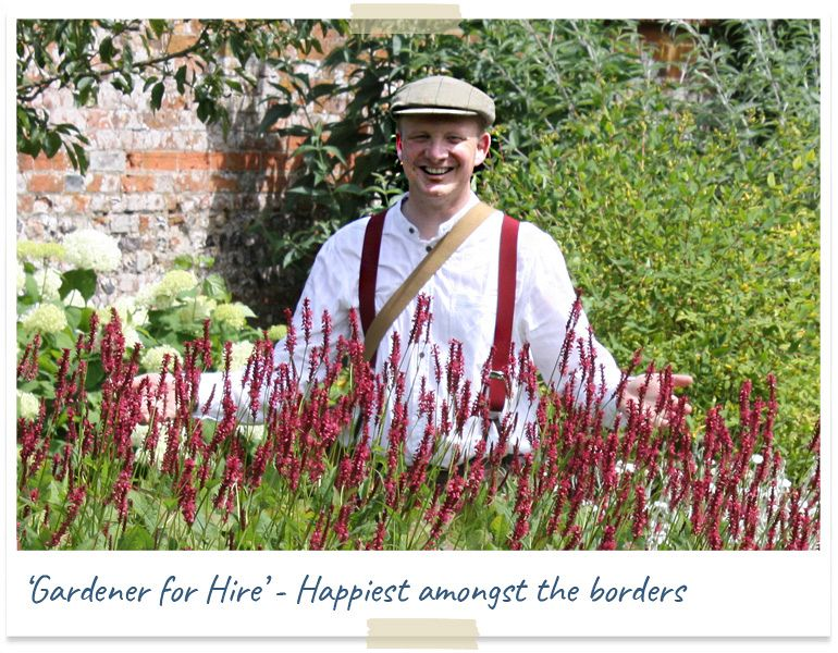 gardener for hire - happiest amongst the borders