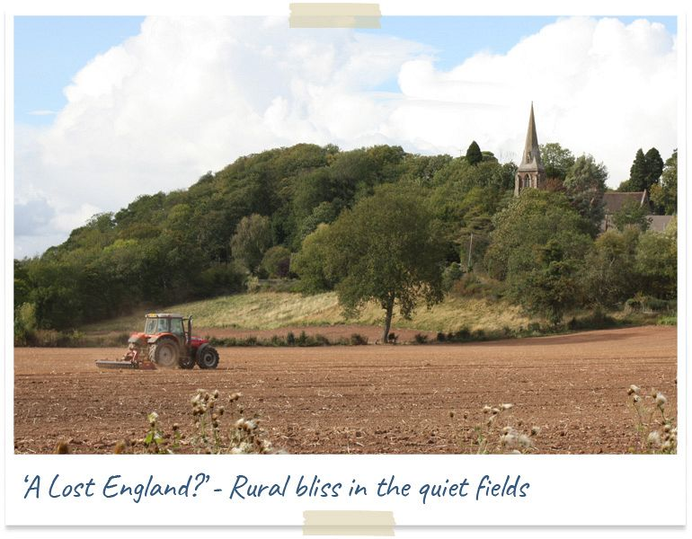 a lost england - rural bliss in the quiet fields