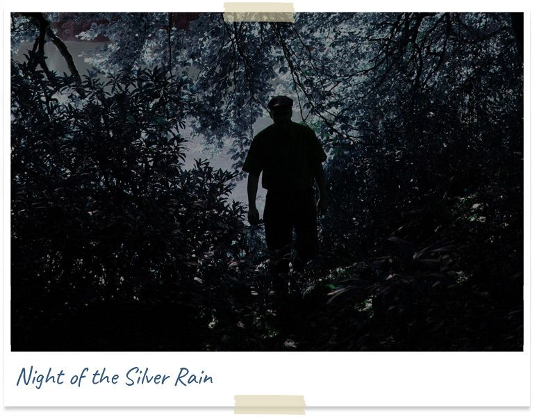 Night of the silver rain