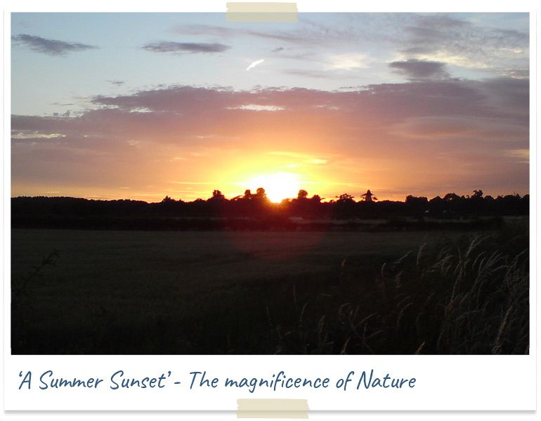 A summer sunset - the magnificence of nature
